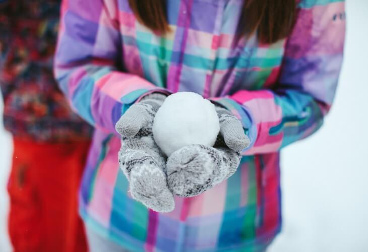 Debt Snowball FI